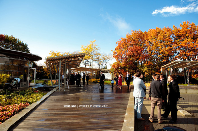 Celebration Pavilion Vancouver Wedding Queen Elizabeth Park