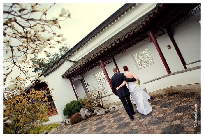 Dr. Sun Yat Sen Classical Chinese Garden wedding photos
