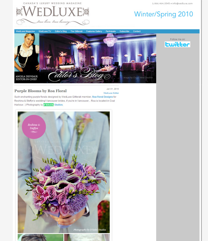 d'Soleil Studios on Wedluxe Magazine Blog - Winter 2010