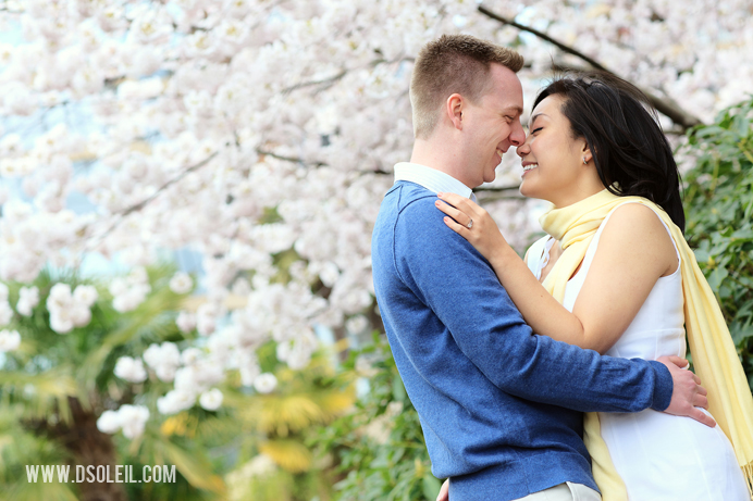 Engagement portraits with Cherry Blossoms in Vancouver (1)