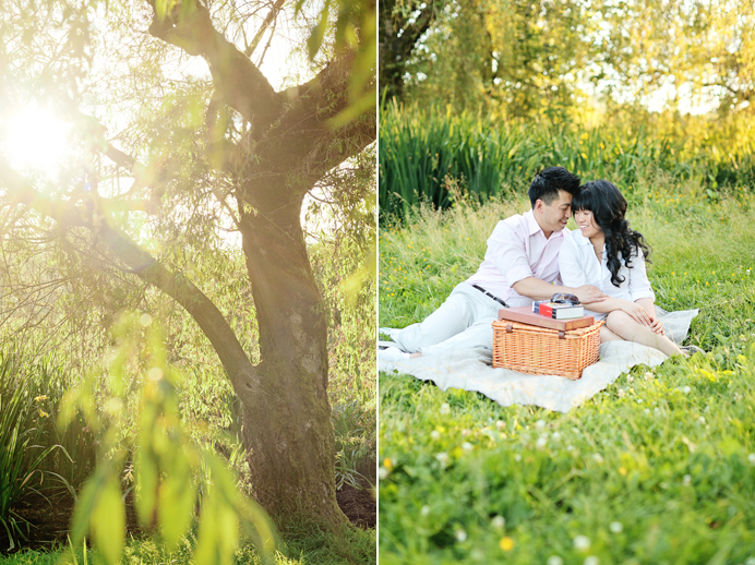 Engagement picnic photos at Trout Lake