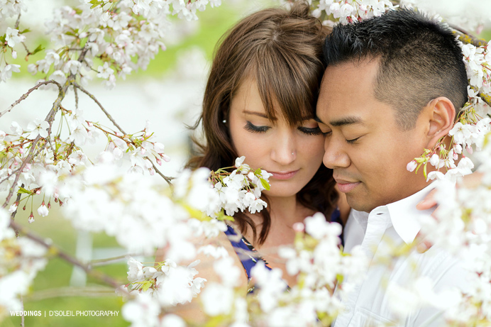 Vancouver cherry blossom engagement session (1)
