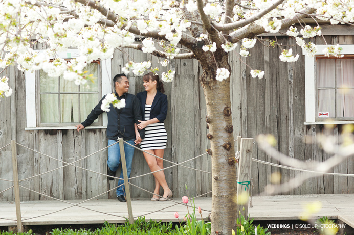 Vancouver cherry blossom engagement session (12)