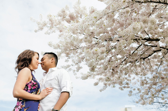 Vancouver cherry blossom engagement session (2)