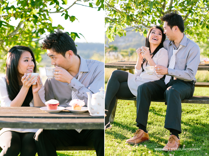picnic fun engagement photos vancouver (14)