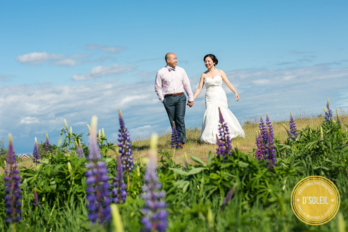 vancouver outdoor weddings
