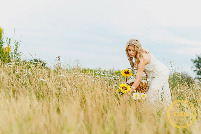 Picking sun flowers in the field