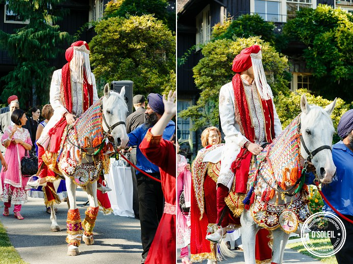 Horse rental for weddings Vancouver