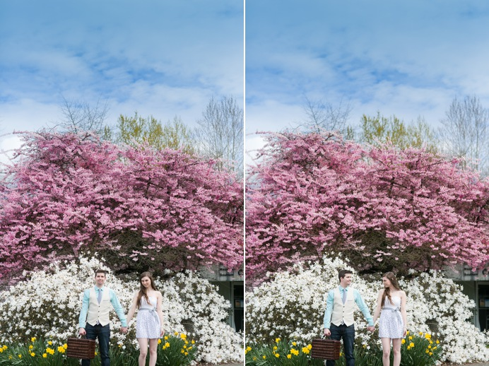 wedding engagement with cherry blossoms