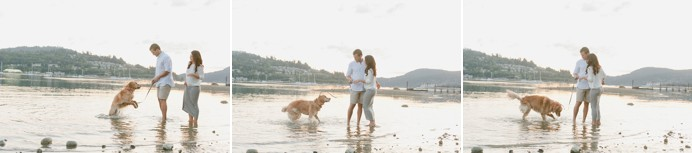 dog on beach engagement session