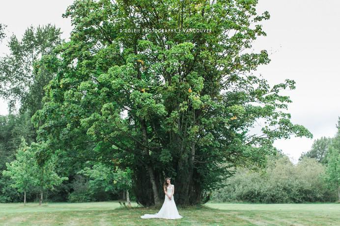 Fraser Valley Bride under a large tree