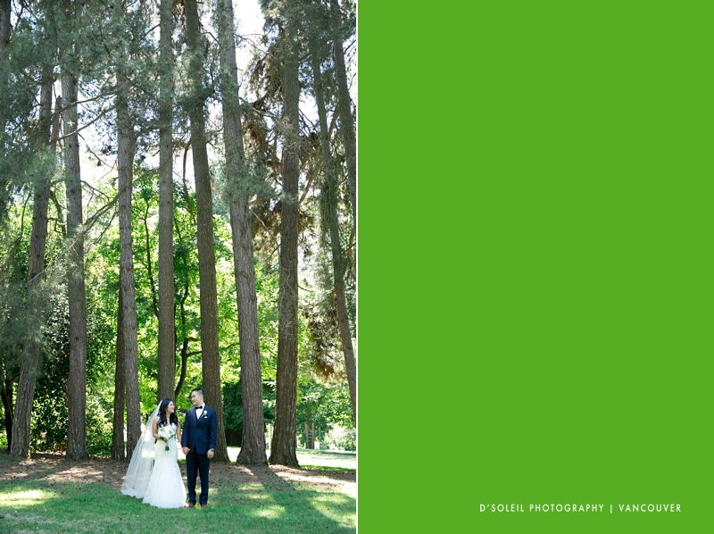 Stanley park tree wedding photo
